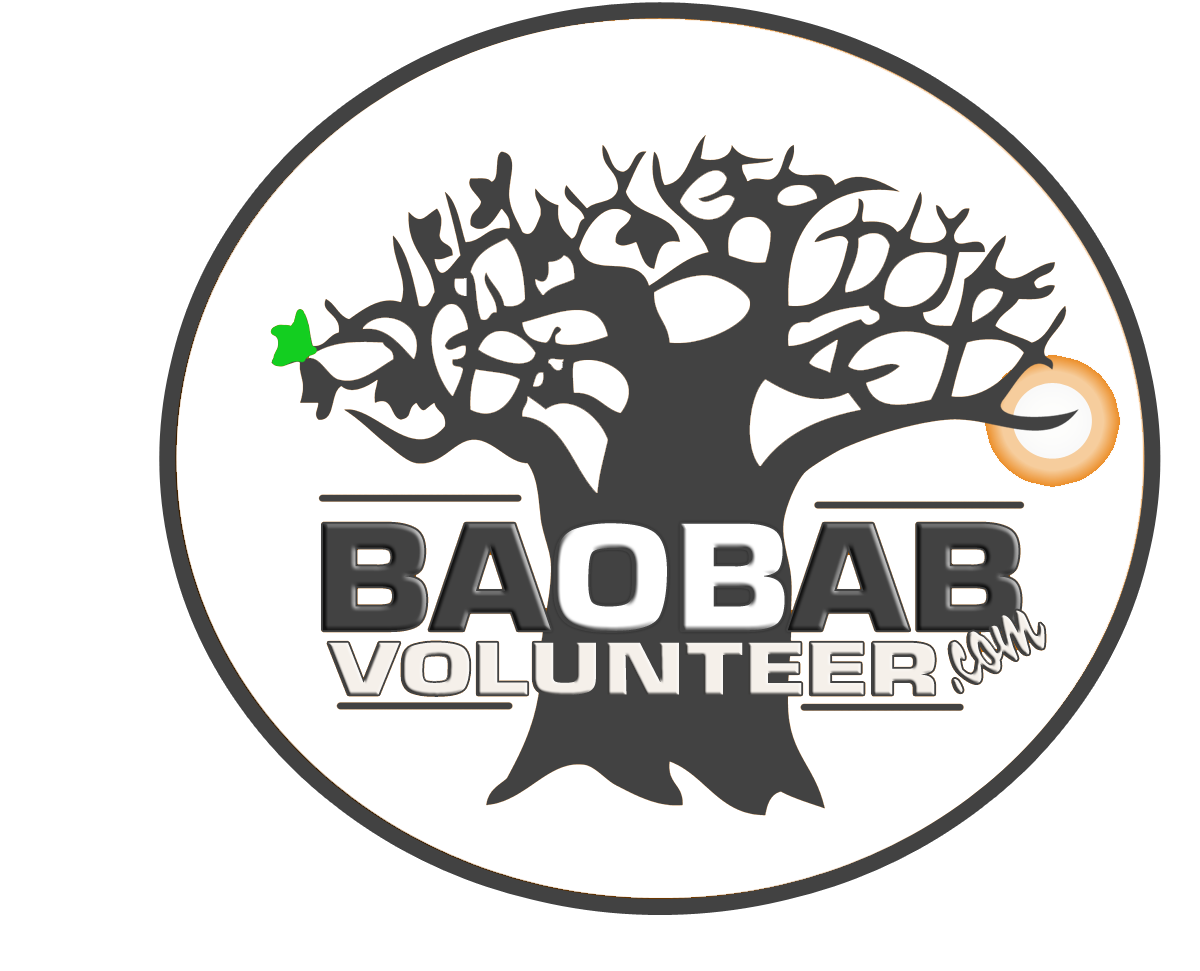 lgBaobab Volunteering Services